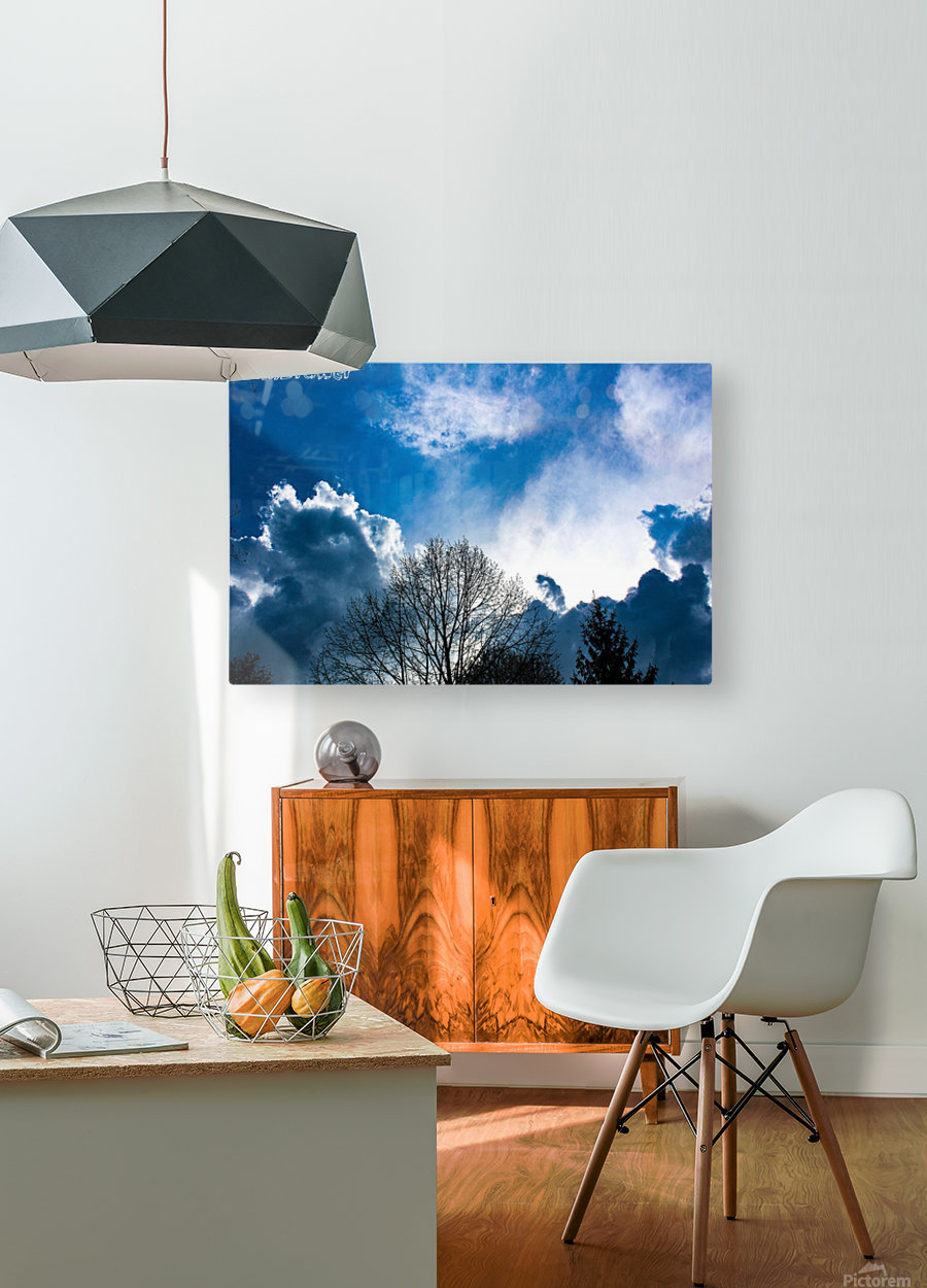 2018 04 13 14 18 08  HD Metal print with Floating Frame on Back