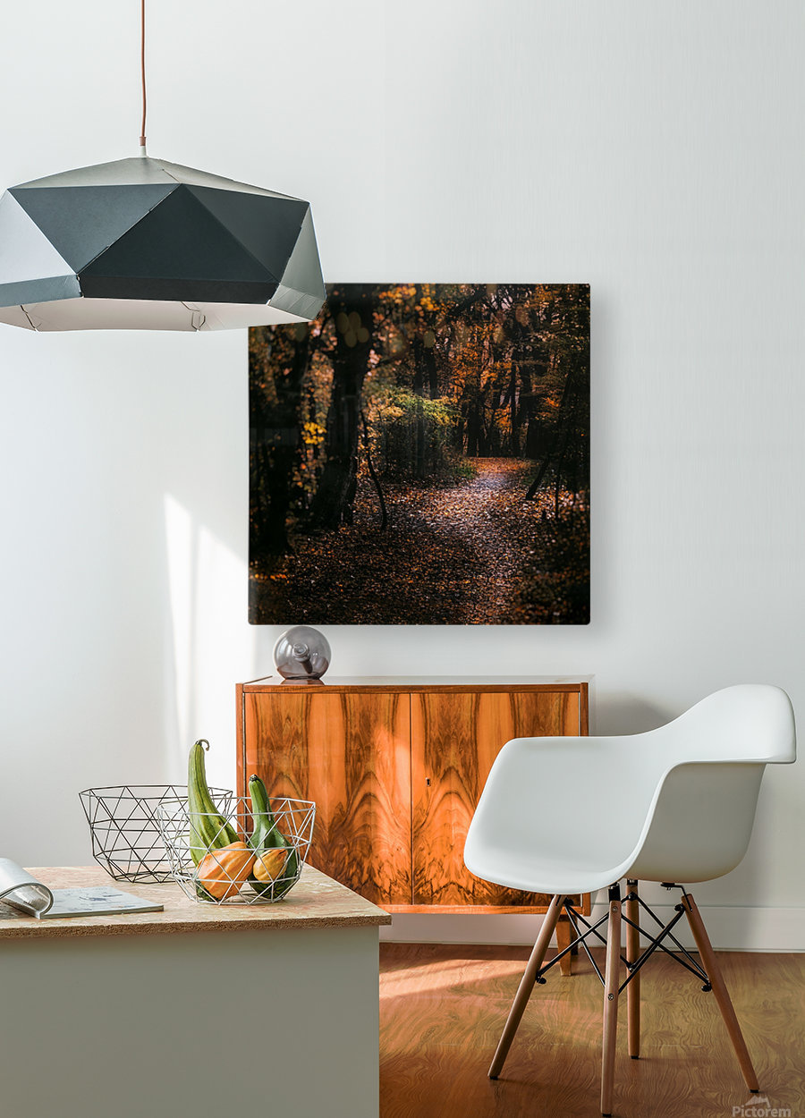 Forest 2_OSG  HD Metal print with Floating Frame on Back