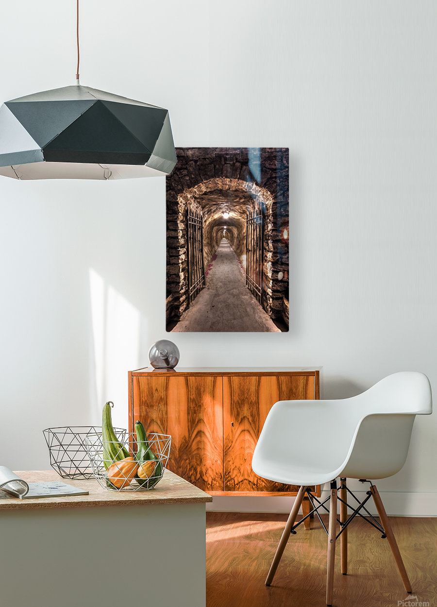 old tunnel  HD Metal print with Floating Frame on Back