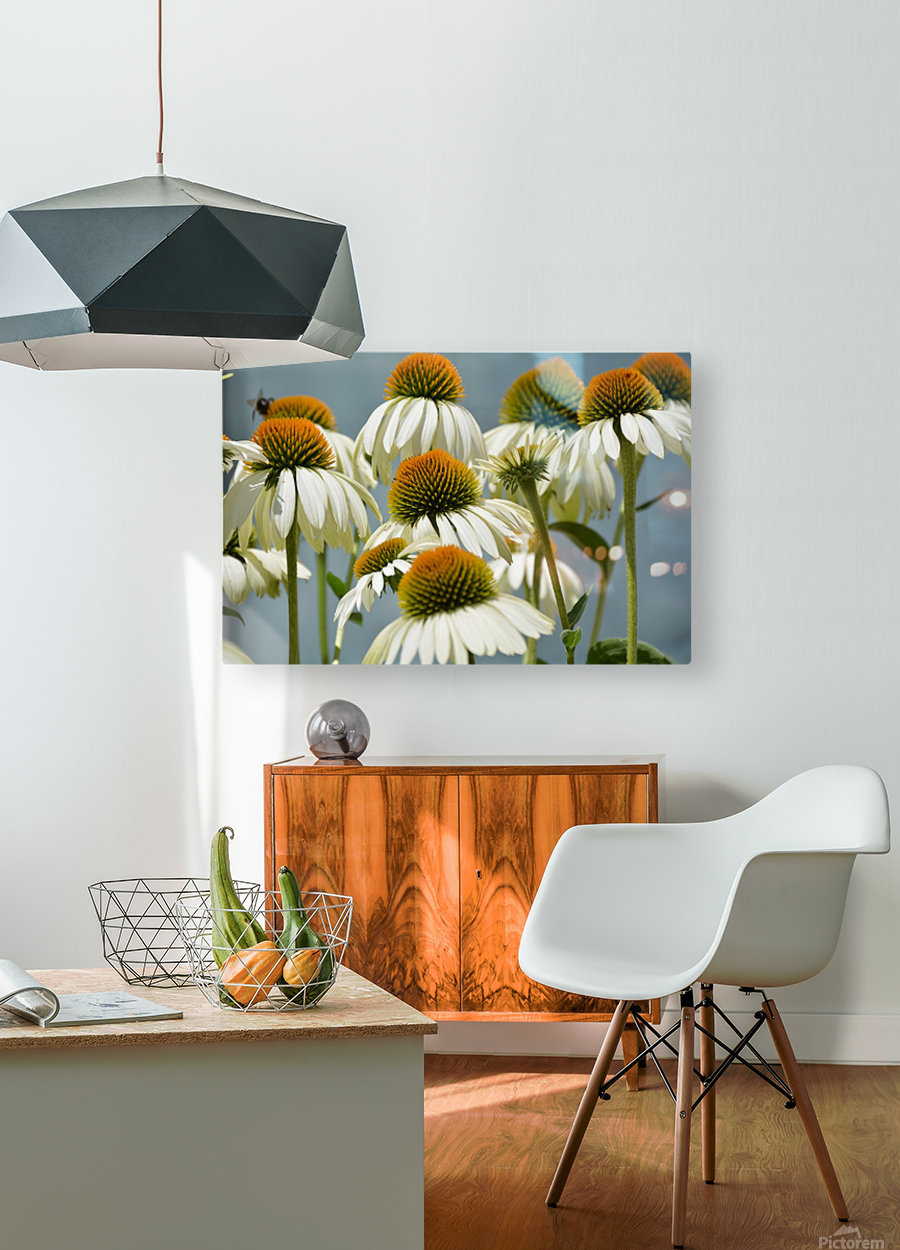 White Flowers Photograph  HD Metal print with Floating Frame on Back