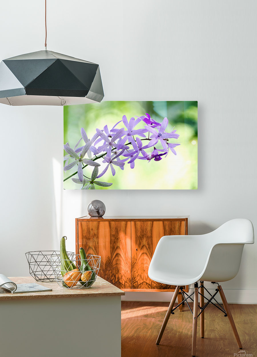 Purple orchid  HD Metal print with Floating Frame on Back