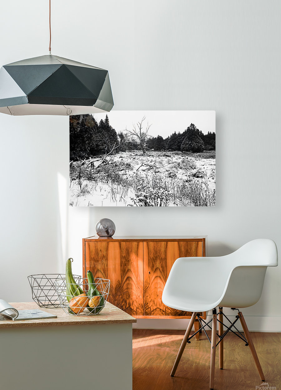 Quiet Winter Black And White  HD Metal print with Floating Frame on Back