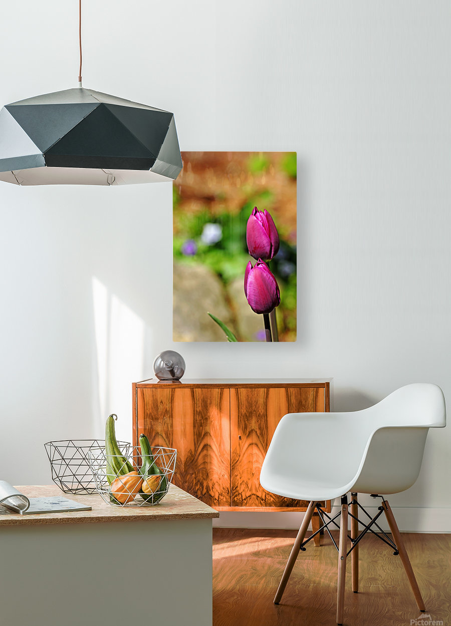 Simple Beauty  HD Metal print with Floating Frame on Back