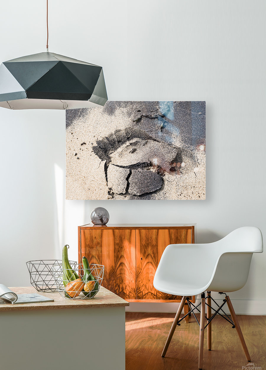 Robinson Crusoe  HD Metal print with Floating Frame on Back
