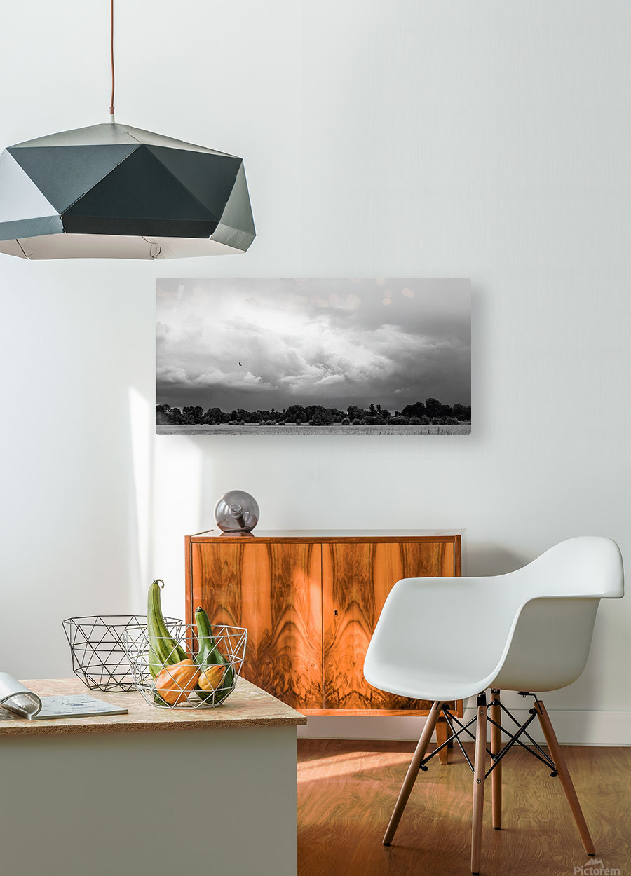 Merton Field  HD Metal print with Floating Frame on Back