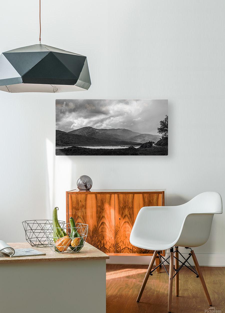 Scotish Highlands  HD Metal print with Floating Frame on Back
