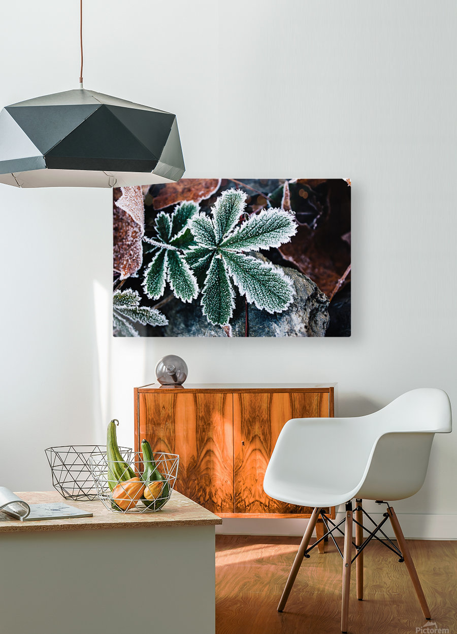 Feuilles Croquantes  HD Metal print with Floating Frame on Back