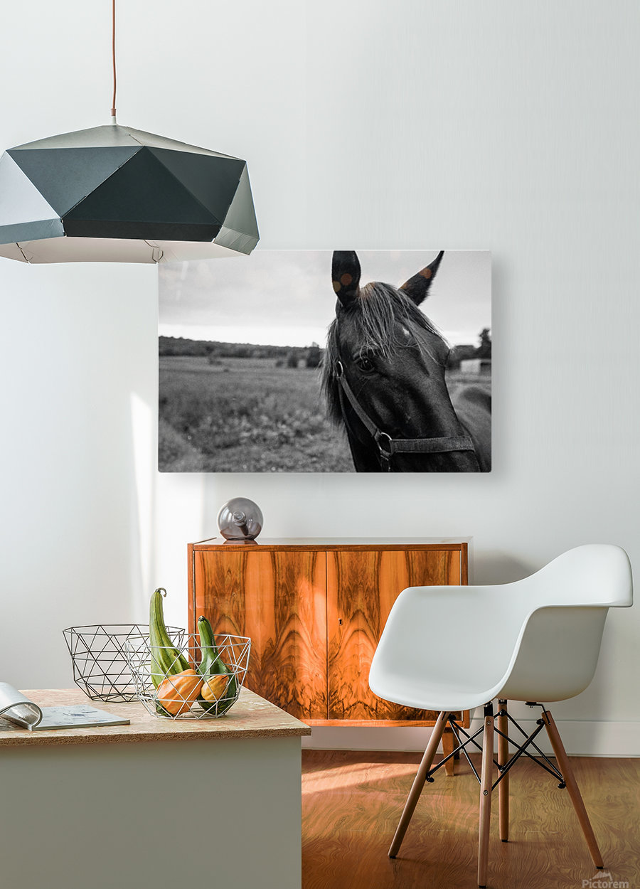 G R I T  HD Metal print with Floating Frame on Back