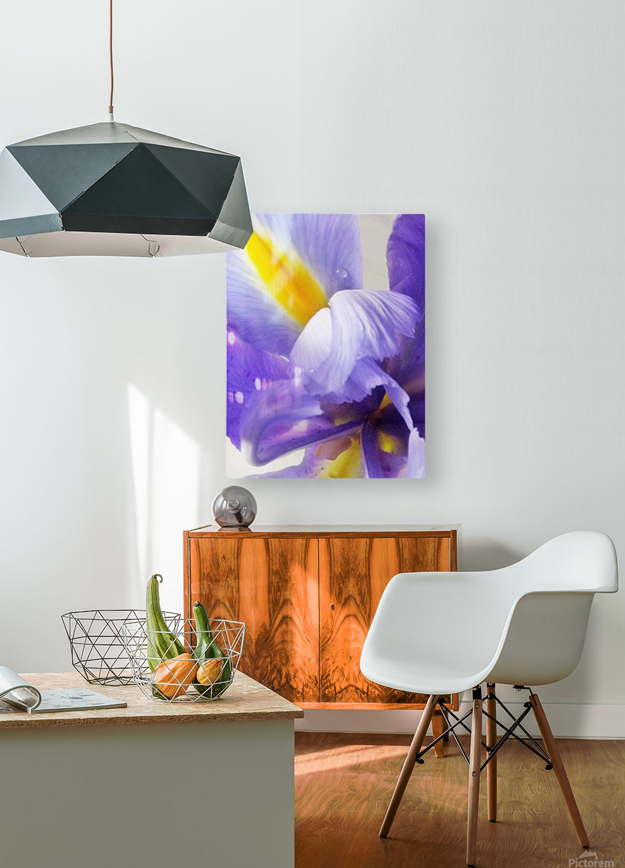 Inner Iris  HD Metal print with Floating Frame on Back