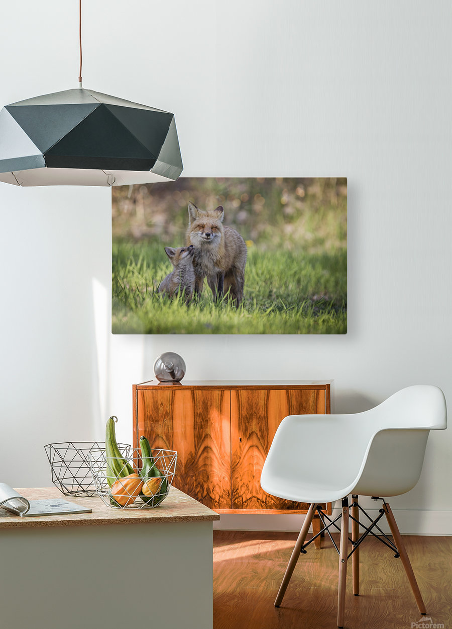 _T8C7860  HD Metal print with Floating Frame on Back