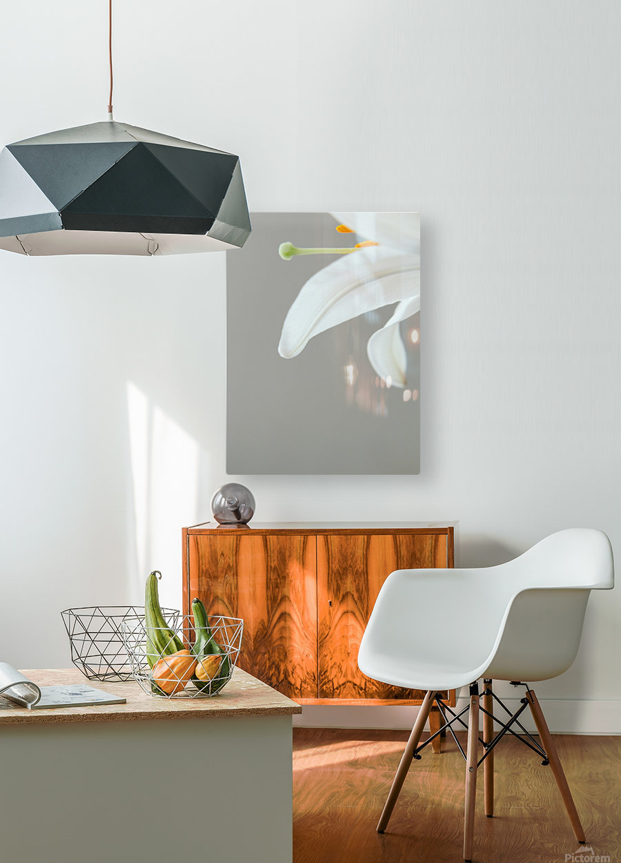 Madonna Lily detail  HD Metal print with Floating Frame on Back