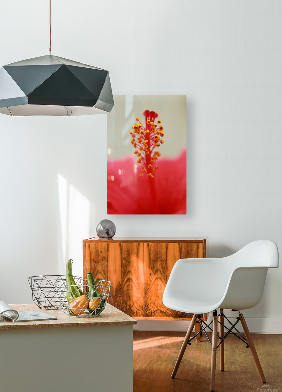 Hibiscus detail  HD Metal print with Floating Frame on Back