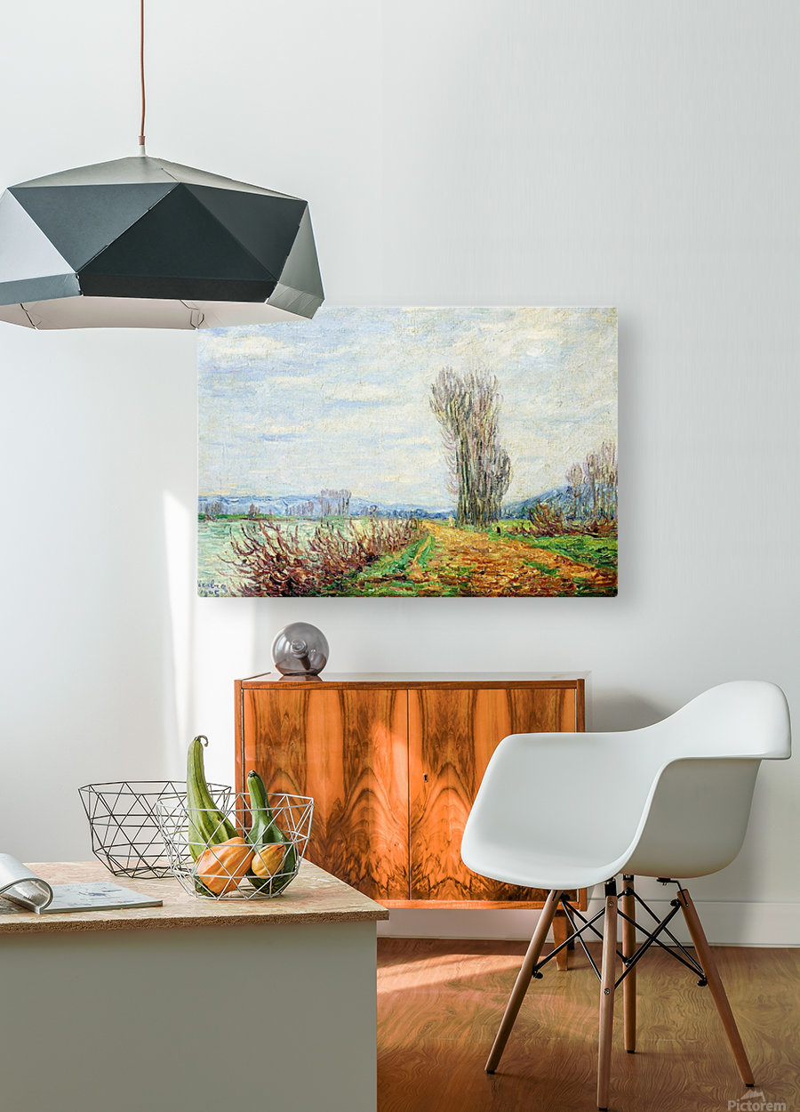 Morning Effect, Bank of the Yonne  HD Metal print with Floating Frame on Back