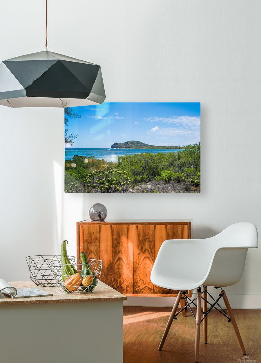 1 88  HD Metal print with Floating Frame on Back