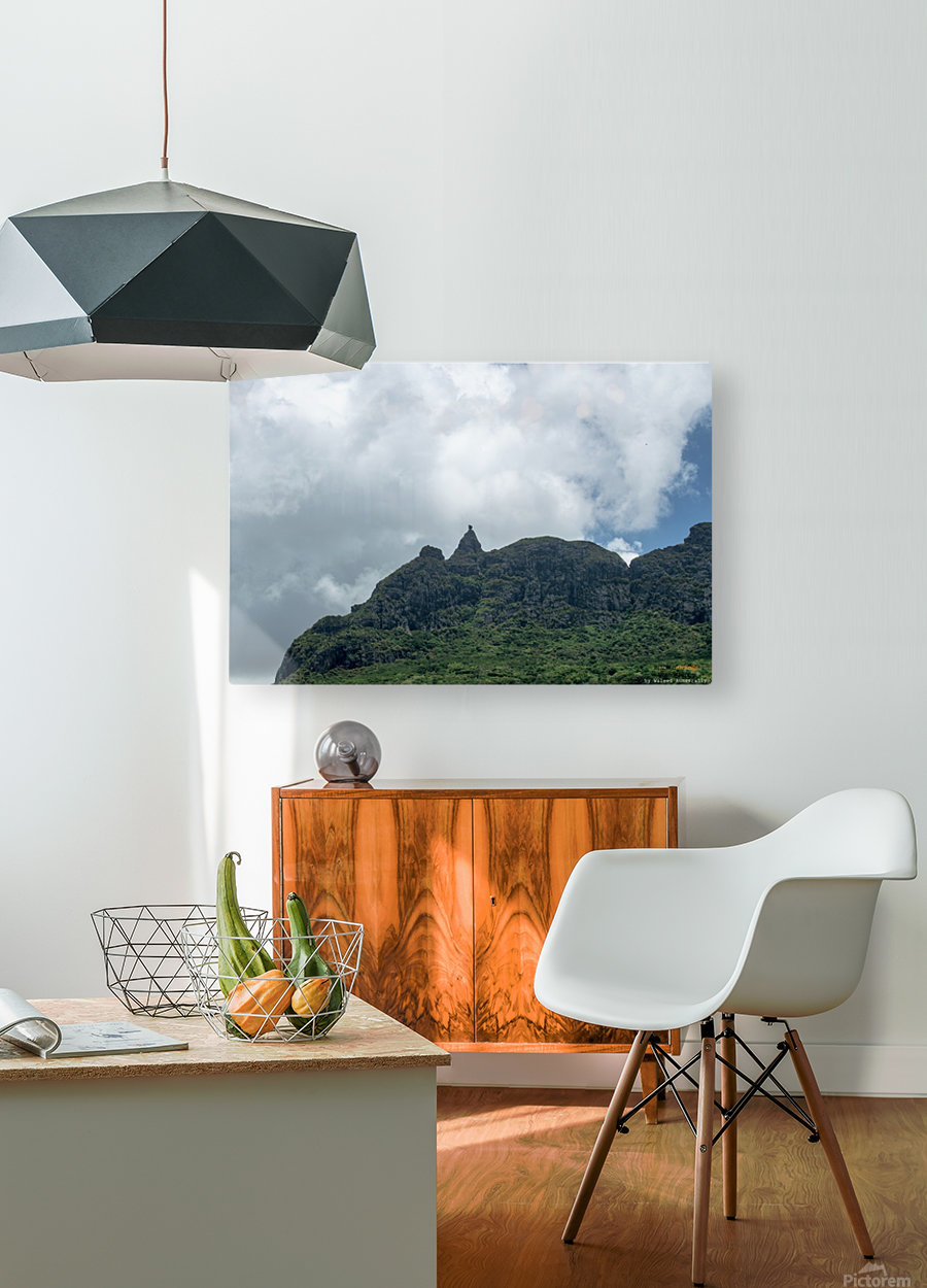 1 89  HD Metal print with Floating Frame on Back