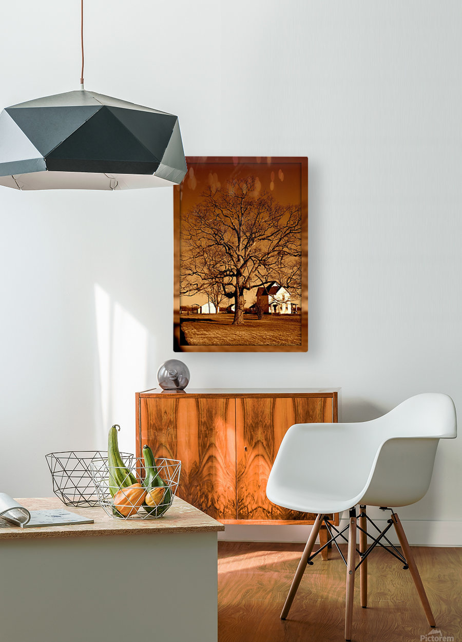 Magnificent Tree  HD Metal print with Floating Frame on Back