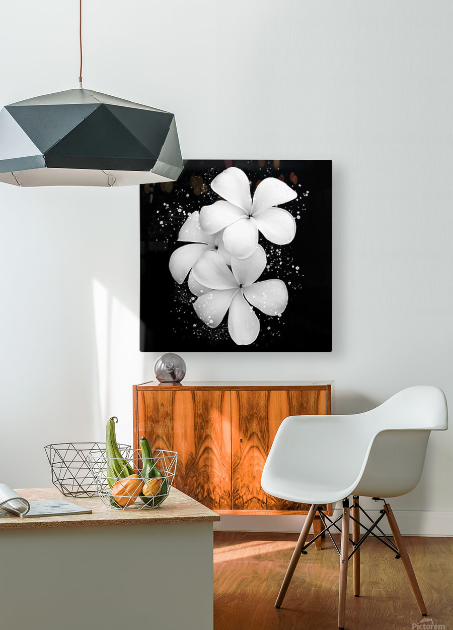 White Petunias   HD Metal print with Floating Frame on Back