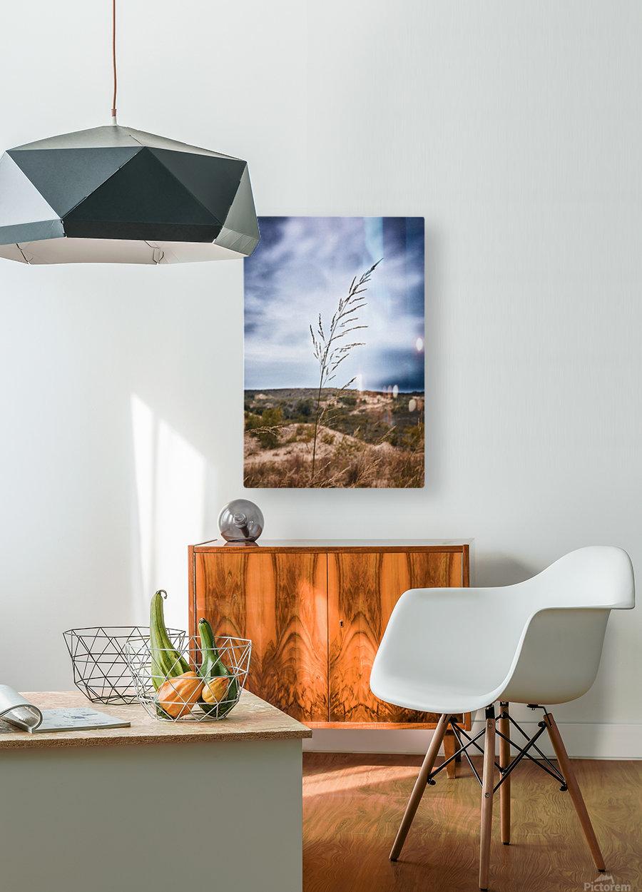 Sleeping Bear Dunes  HD Metal print with Floating Frame on Back