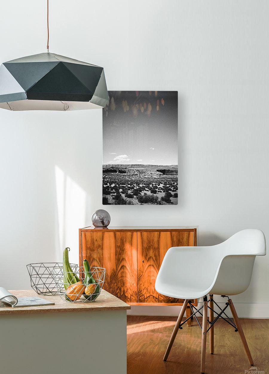 Saguaro Golden Hours  HD Metal print with Floating Frame on Back