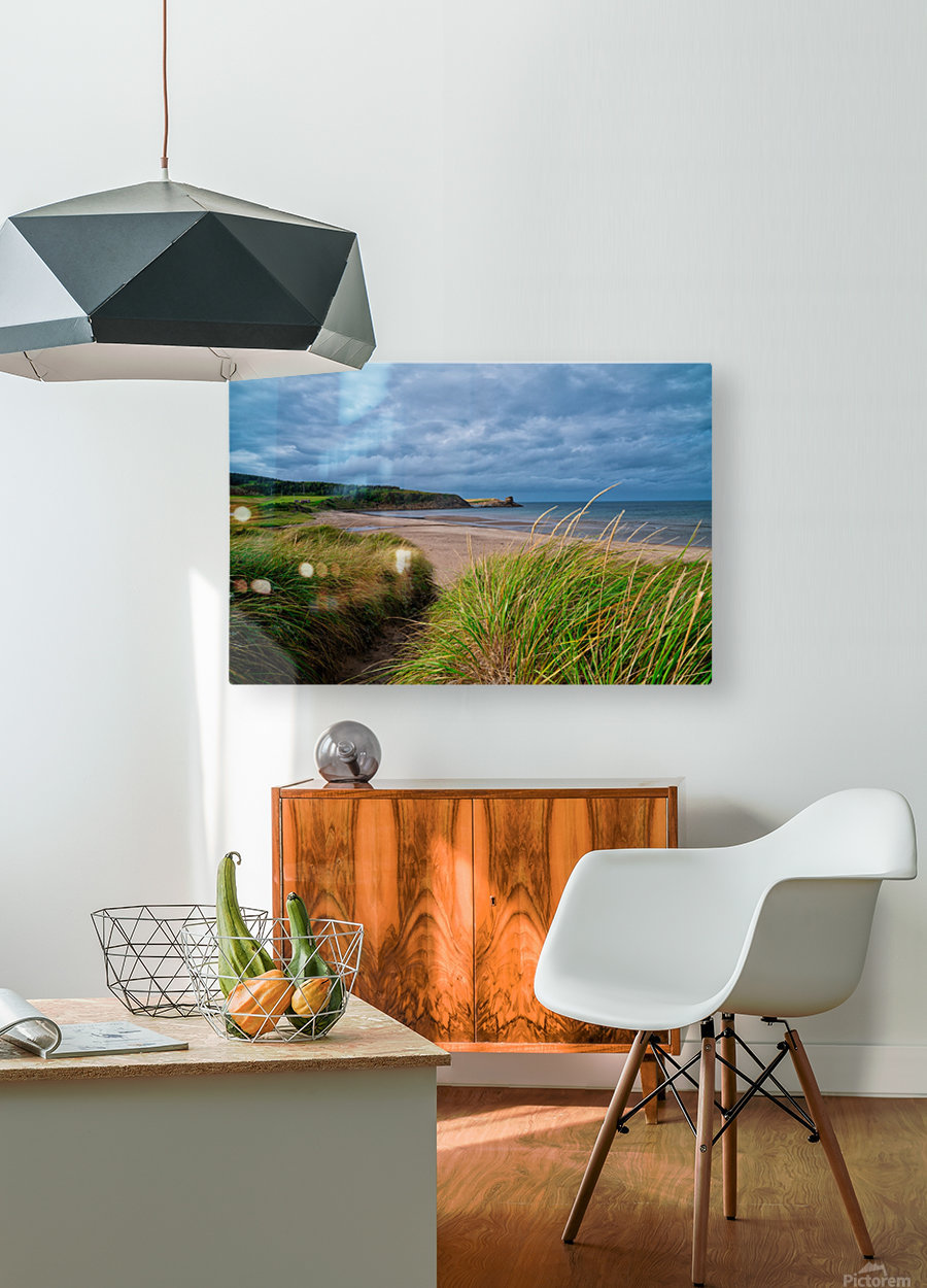 Sand and Grass  HD Metal print with Floating Frame on Back