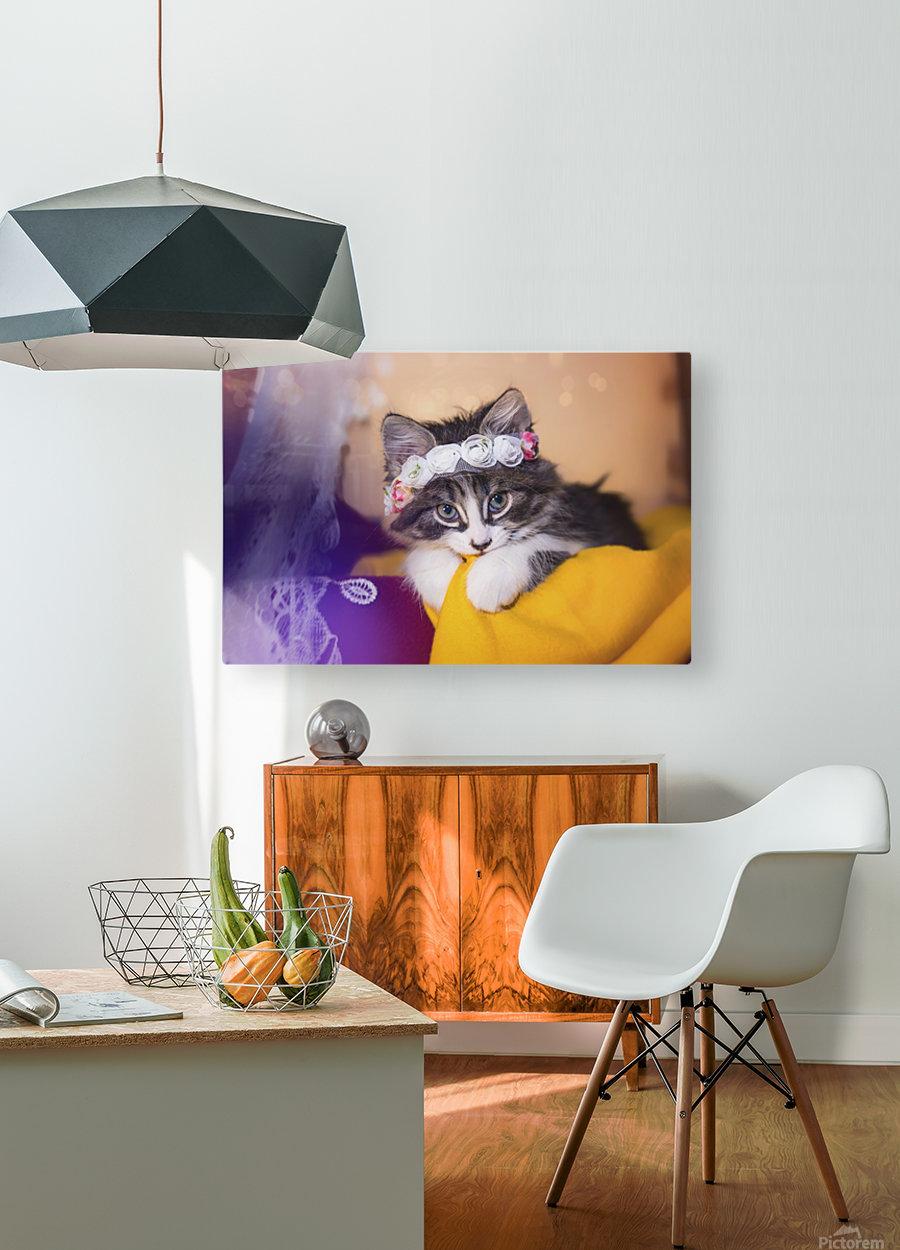 Murmur 1  HD Metal print with Floating Frame on Back