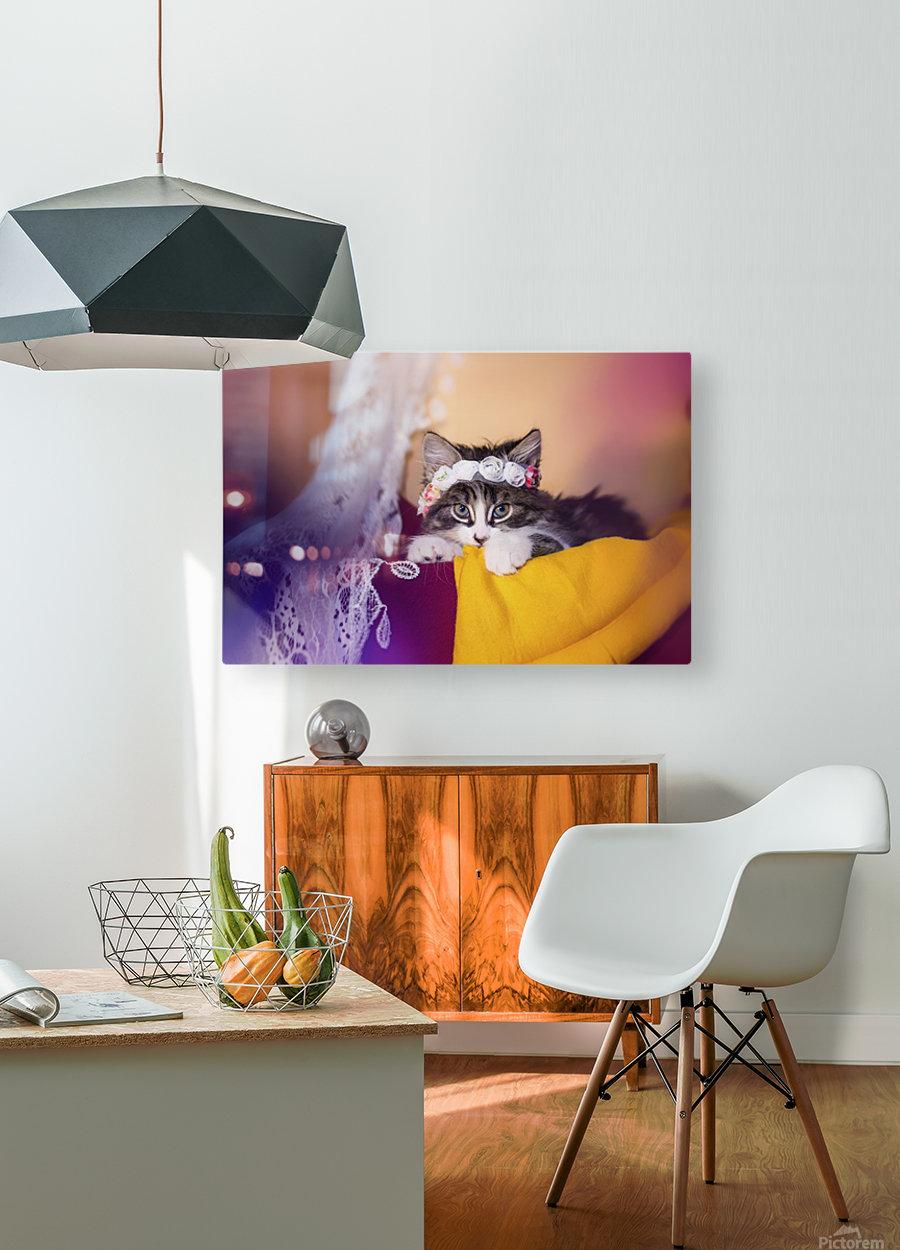 Murmur 2  HD Metal print with Floating Frame on Back
