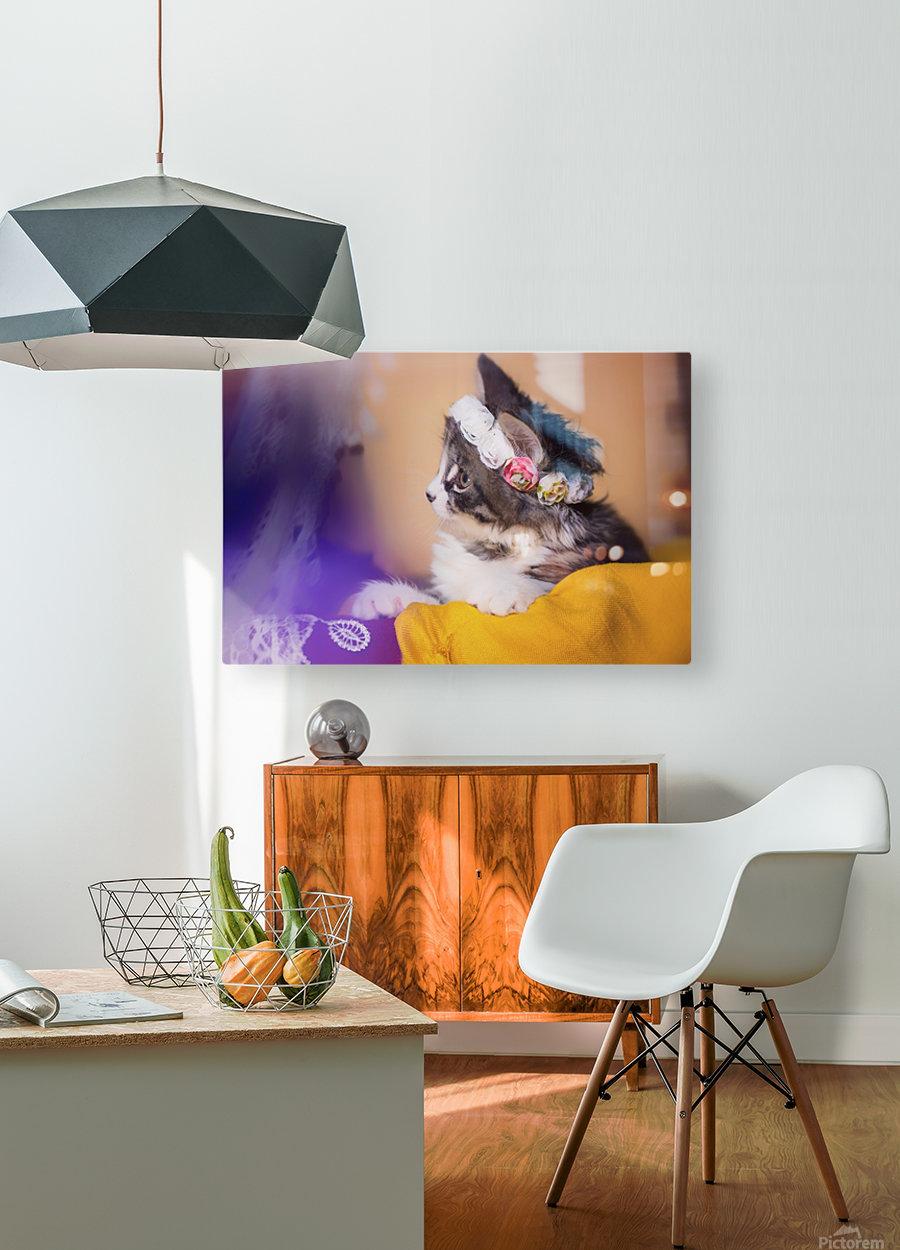 Murmur 3  HD Metal print with Floating Frame on Back