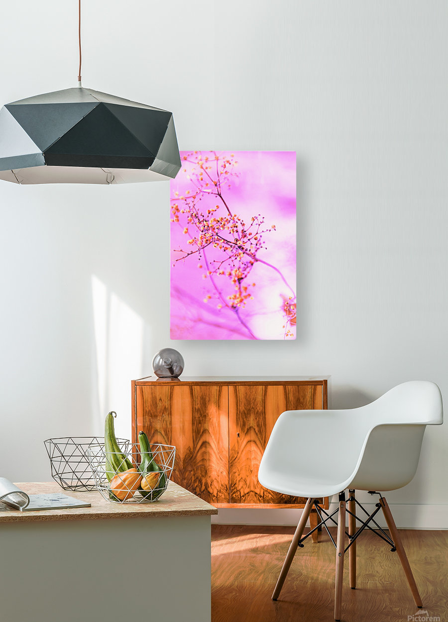 paint it pink   HD Metal print with Floating Frame on Back