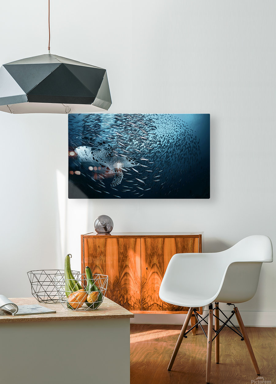 Bend  HD Metal print with Floating Frame on Back