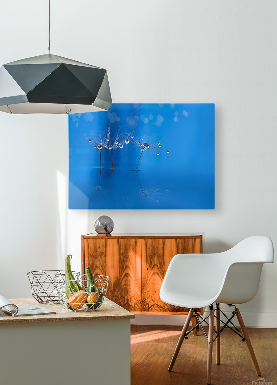 Blue fun  HD Metal print with Floating Frame on Back