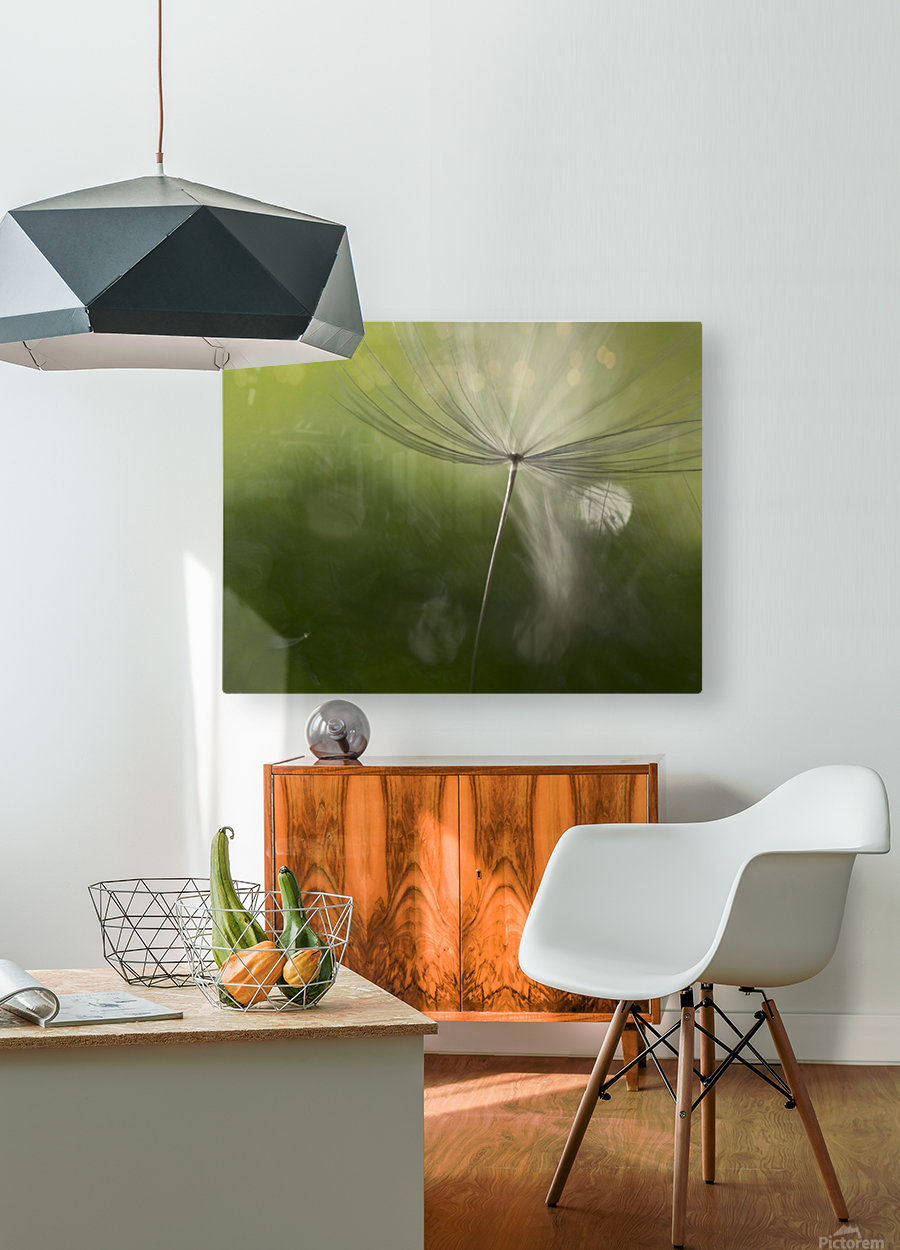 Shadows in the green  HD Metal print with Floating Frame on Back