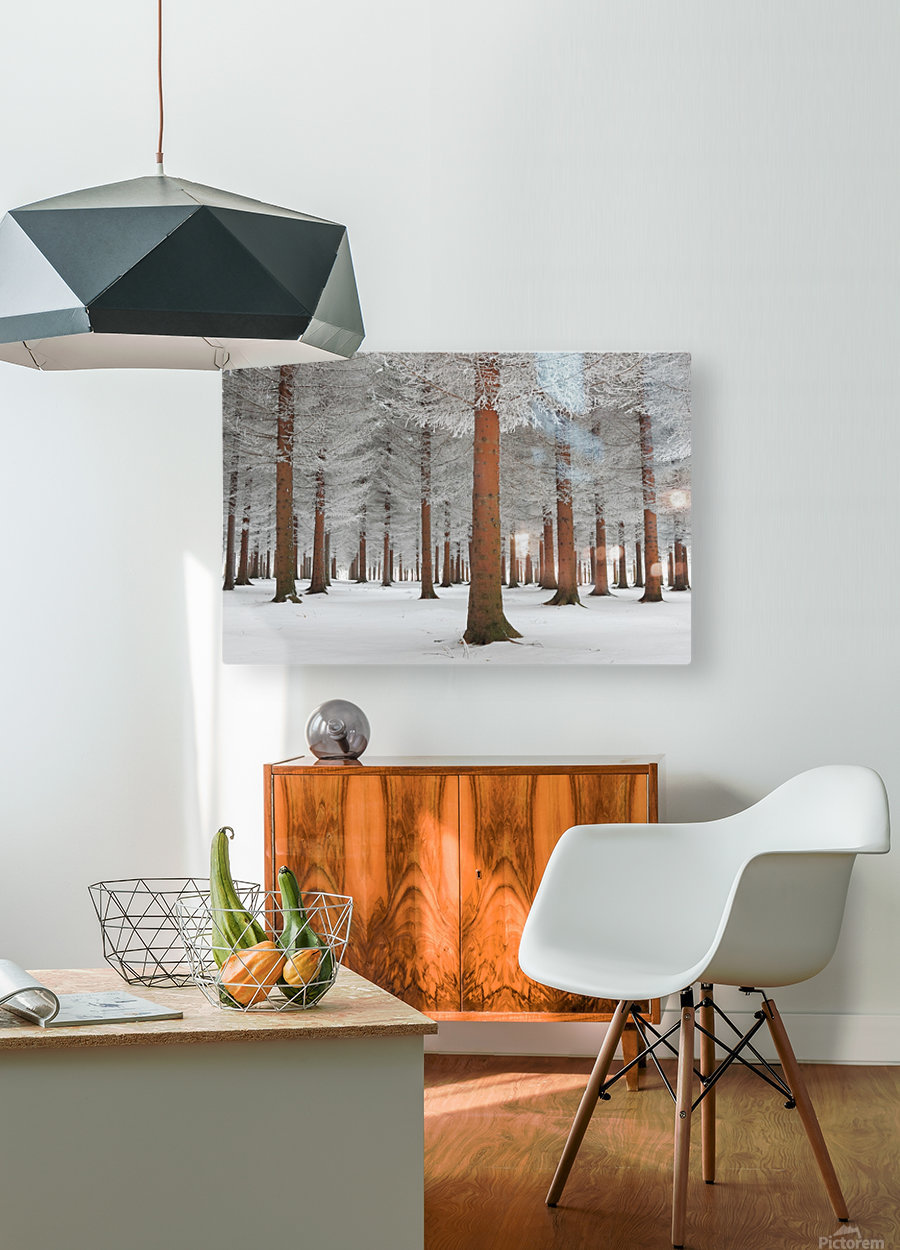 magical forest  HD Metal print with Floating Frame on Back