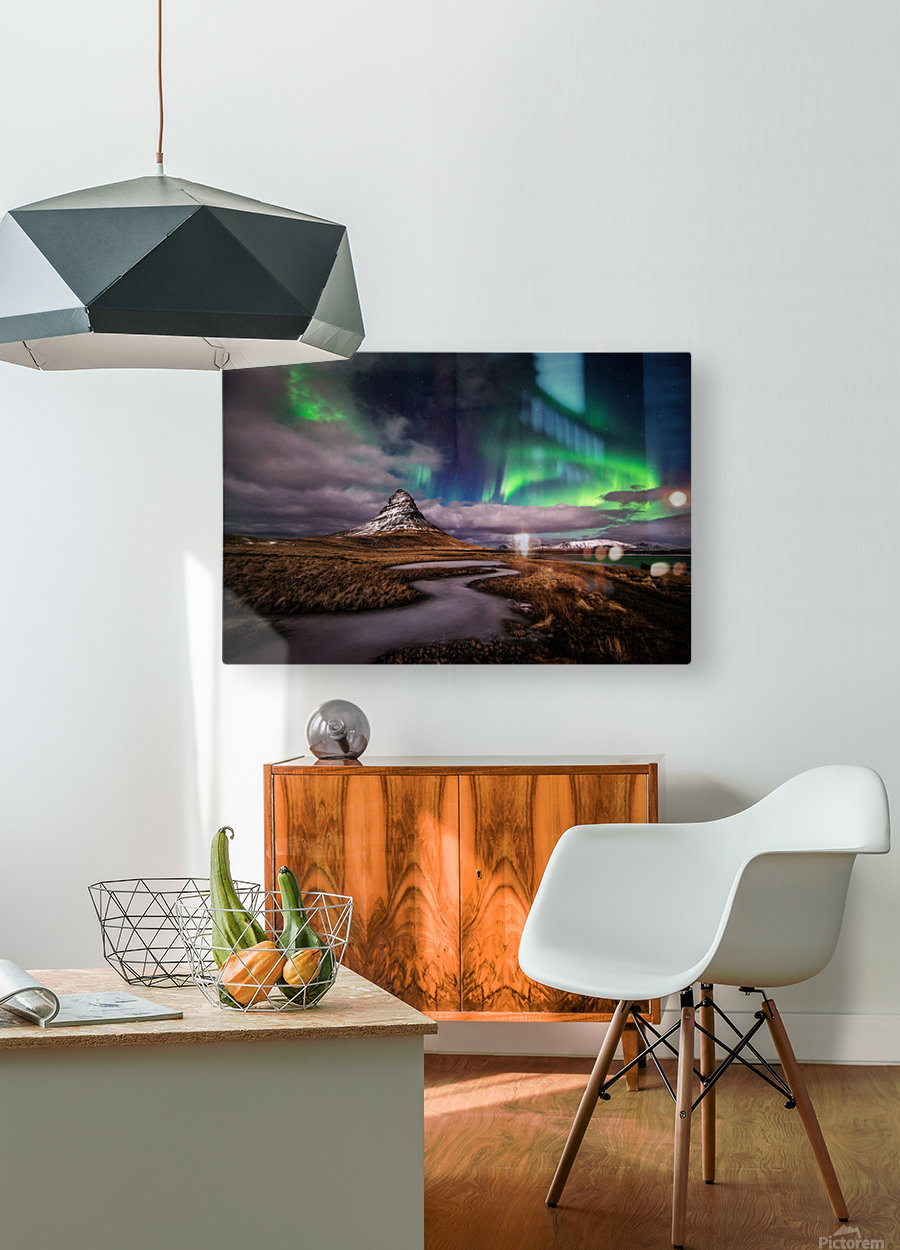 Green Snake  HD Metal print with Floating Frame on Back
