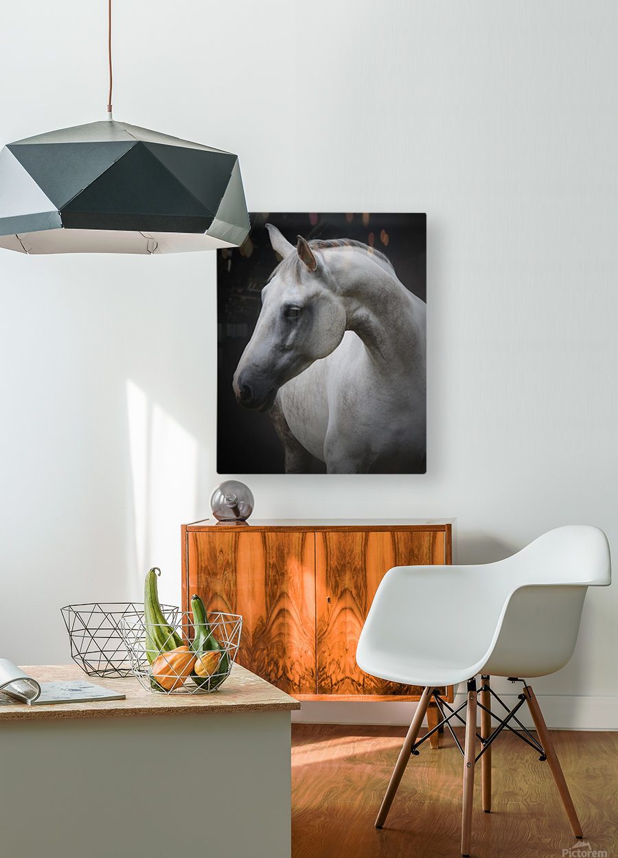 Maggie  HD Metal print with Floating Frame on Back