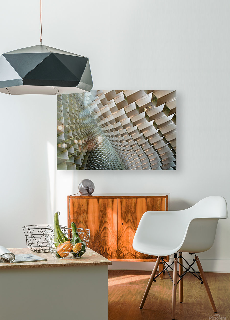 Serpentine  HD Metal print with Floating Frame on Back