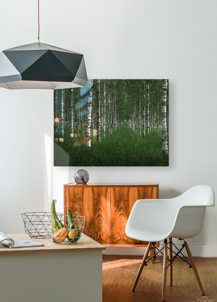 The tunnel  HD Metal print with Floating Frame on Back