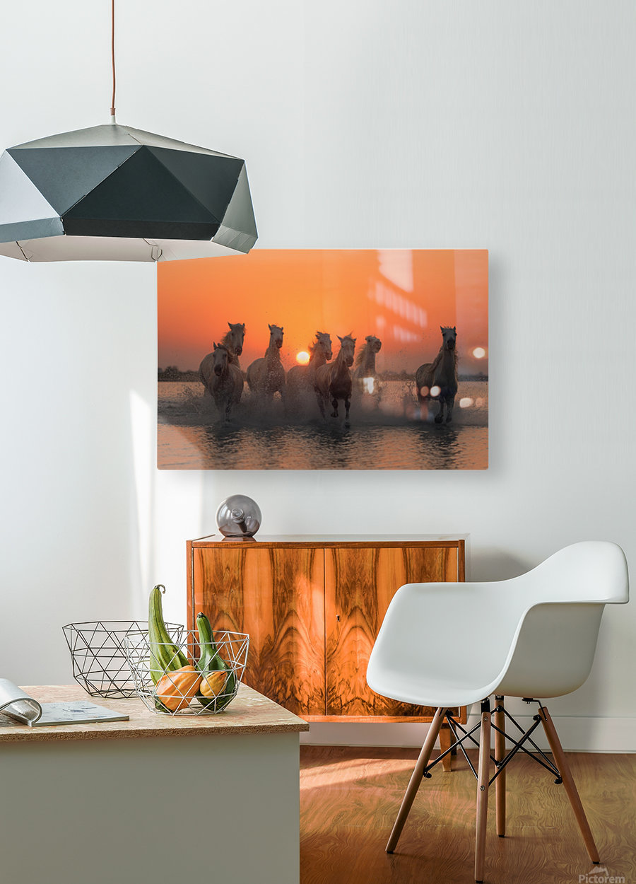 Sunset in Camargue  HD Metal print with Floating Frame on Back