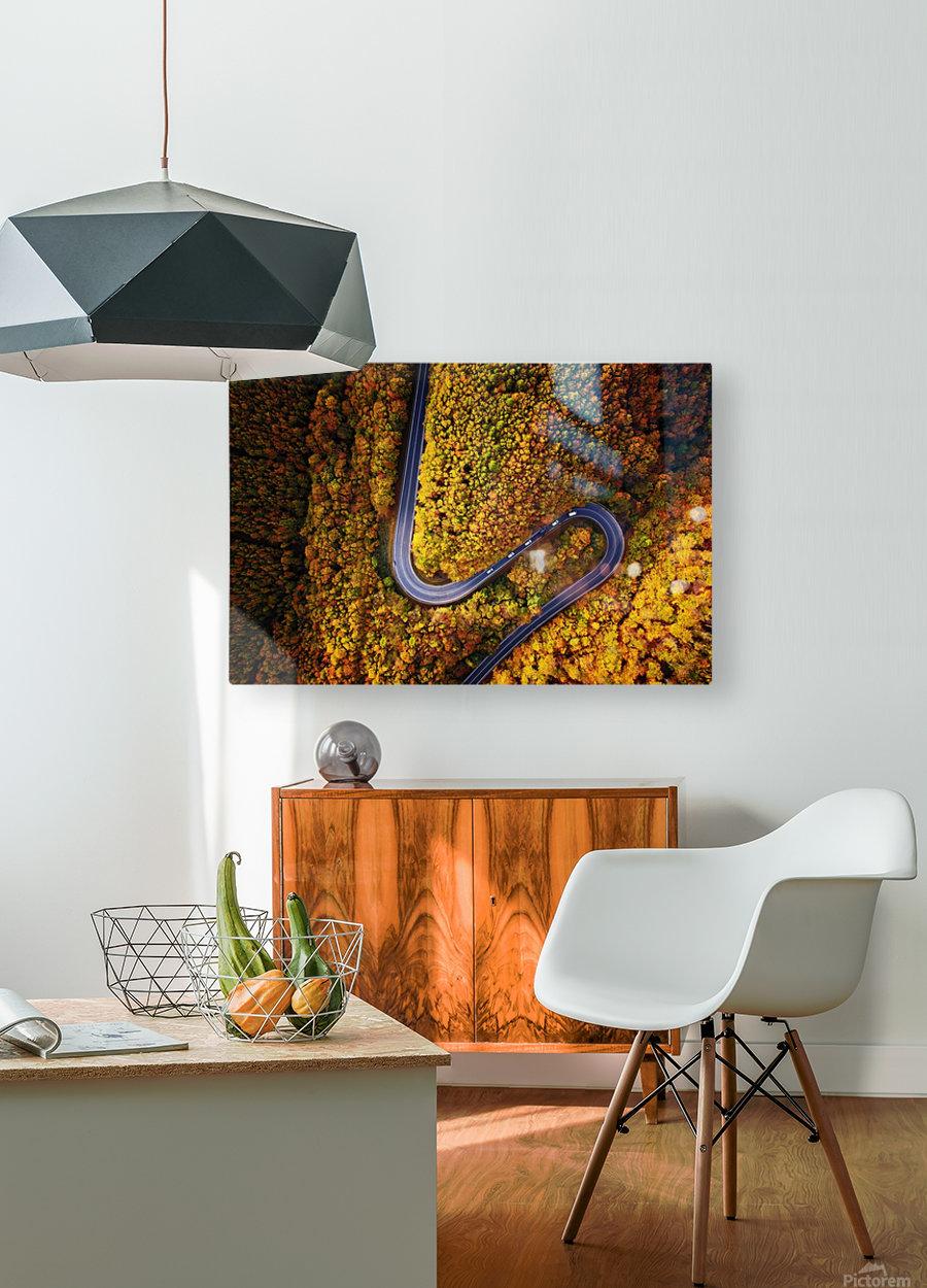 Serpentine column  HD Metal print with Floating Frame on Back