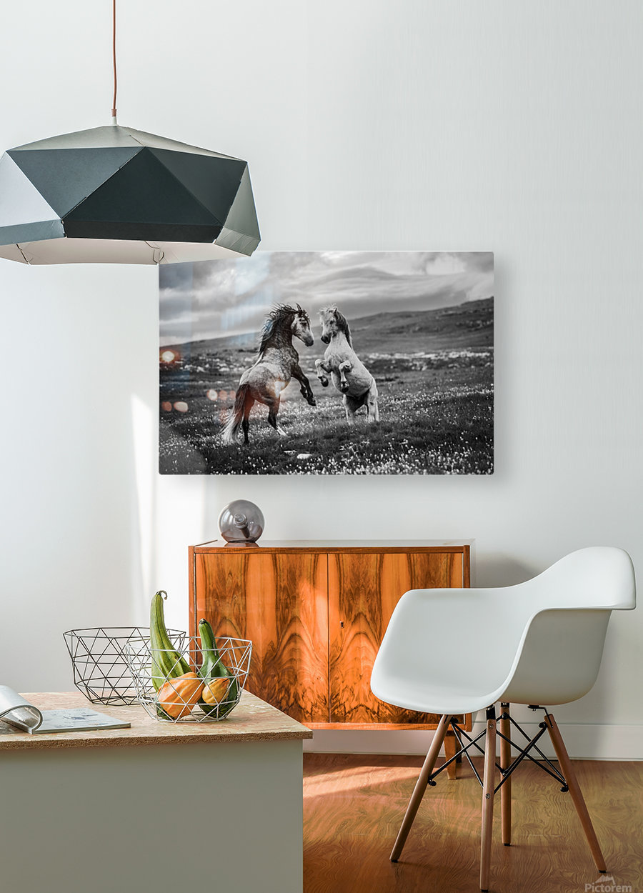 Wild and free  HD Metal print with Floating Frame on Back
