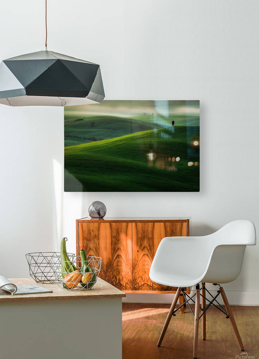 Boss  HD Metal print with Floating Frame on Back