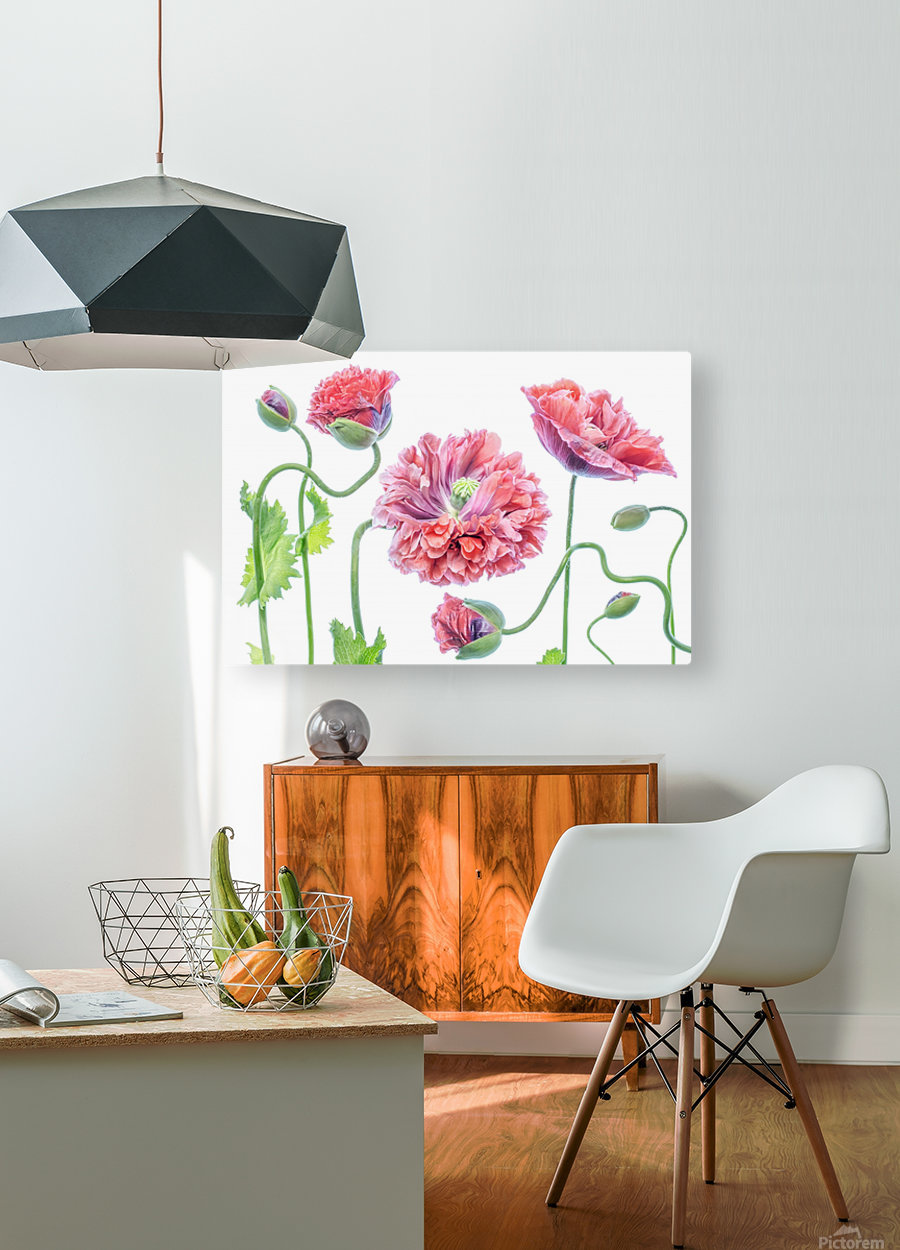 Fancy  HD Metal print with Floating Frame on Back
