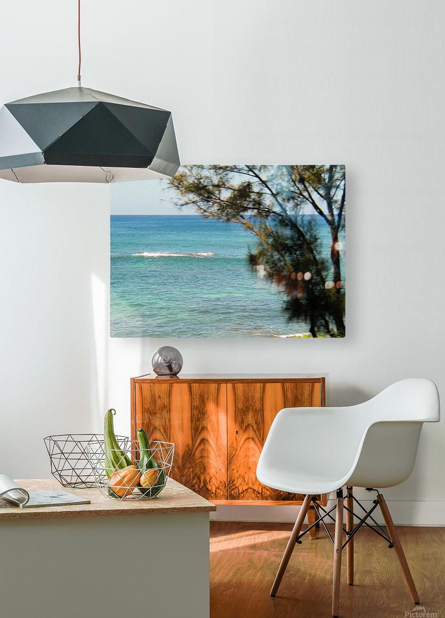 Ocean8  HD Metal print with Floating Frame on Back