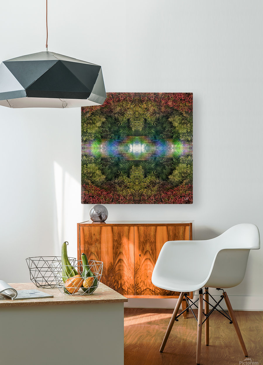 Accidental Portal  HD Metal print with Floating Frame on Back