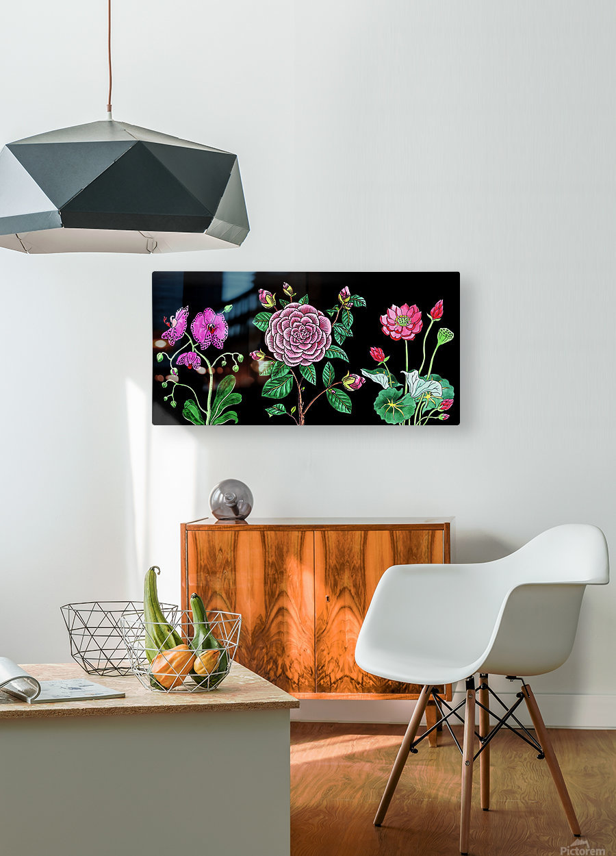Camellia Orchid Lotus Flowers Watercolor On Black  HD Metal print with Floating Frame on Back