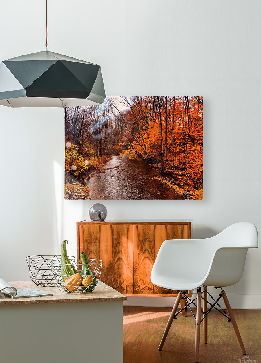 Explore  HD Metal print with Floating Frame on Back