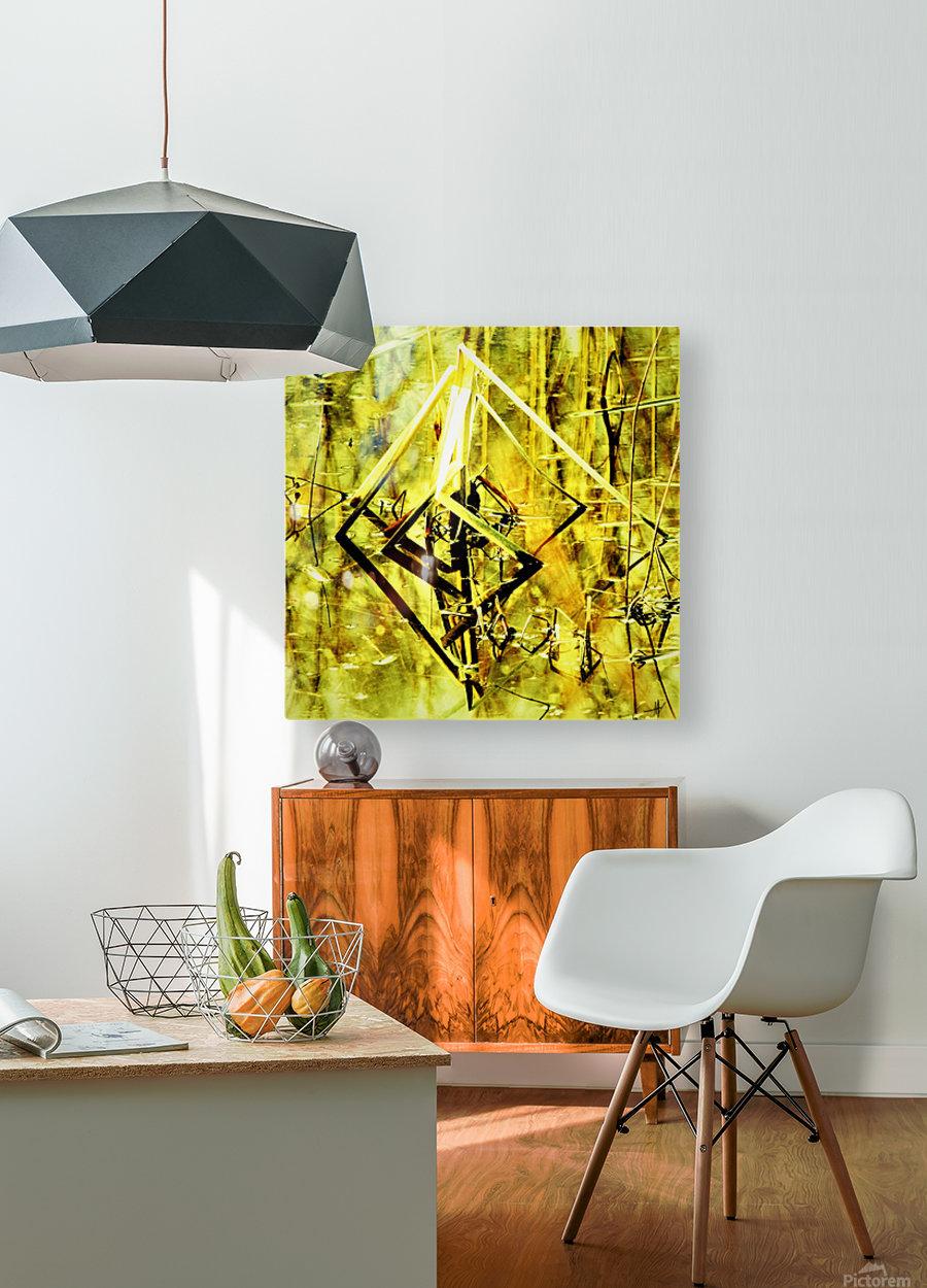 DSC_0129 (2)_LI  HD Metal print with Floating Frame on Back