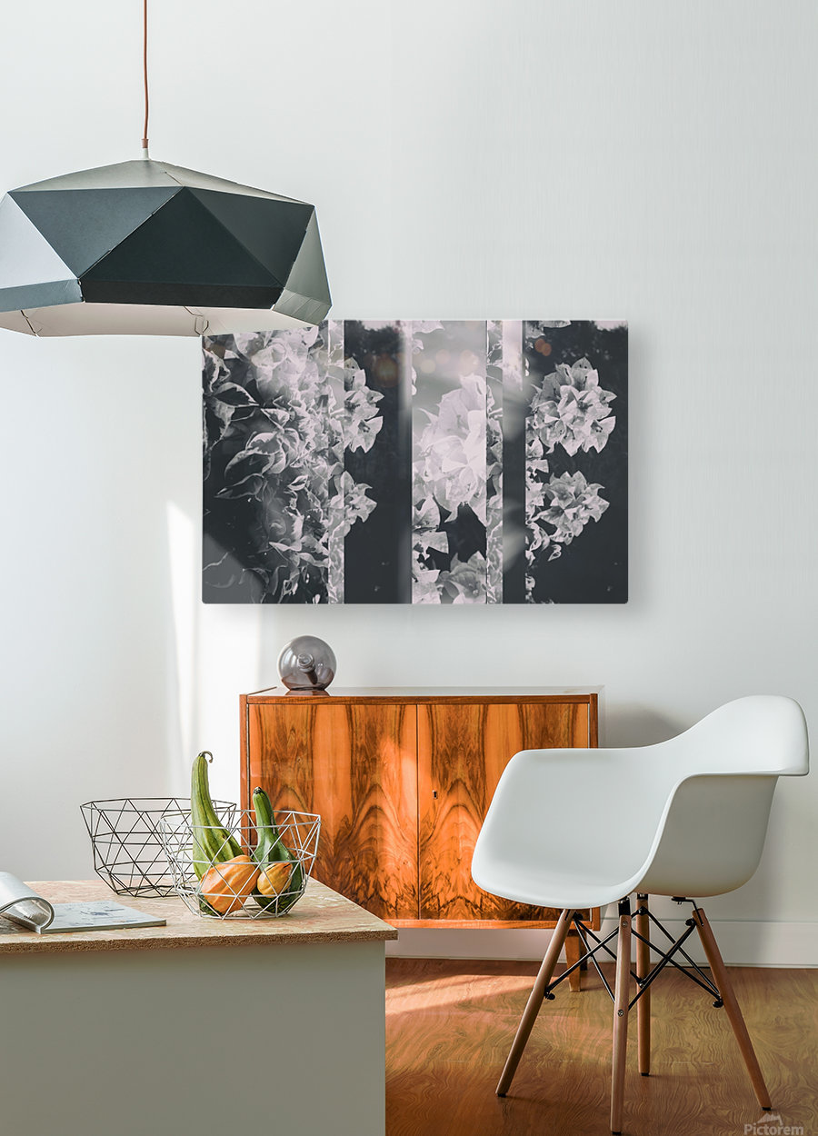 Bougainvillea Collage B&W  HD Metal print with Floating Frame on Back