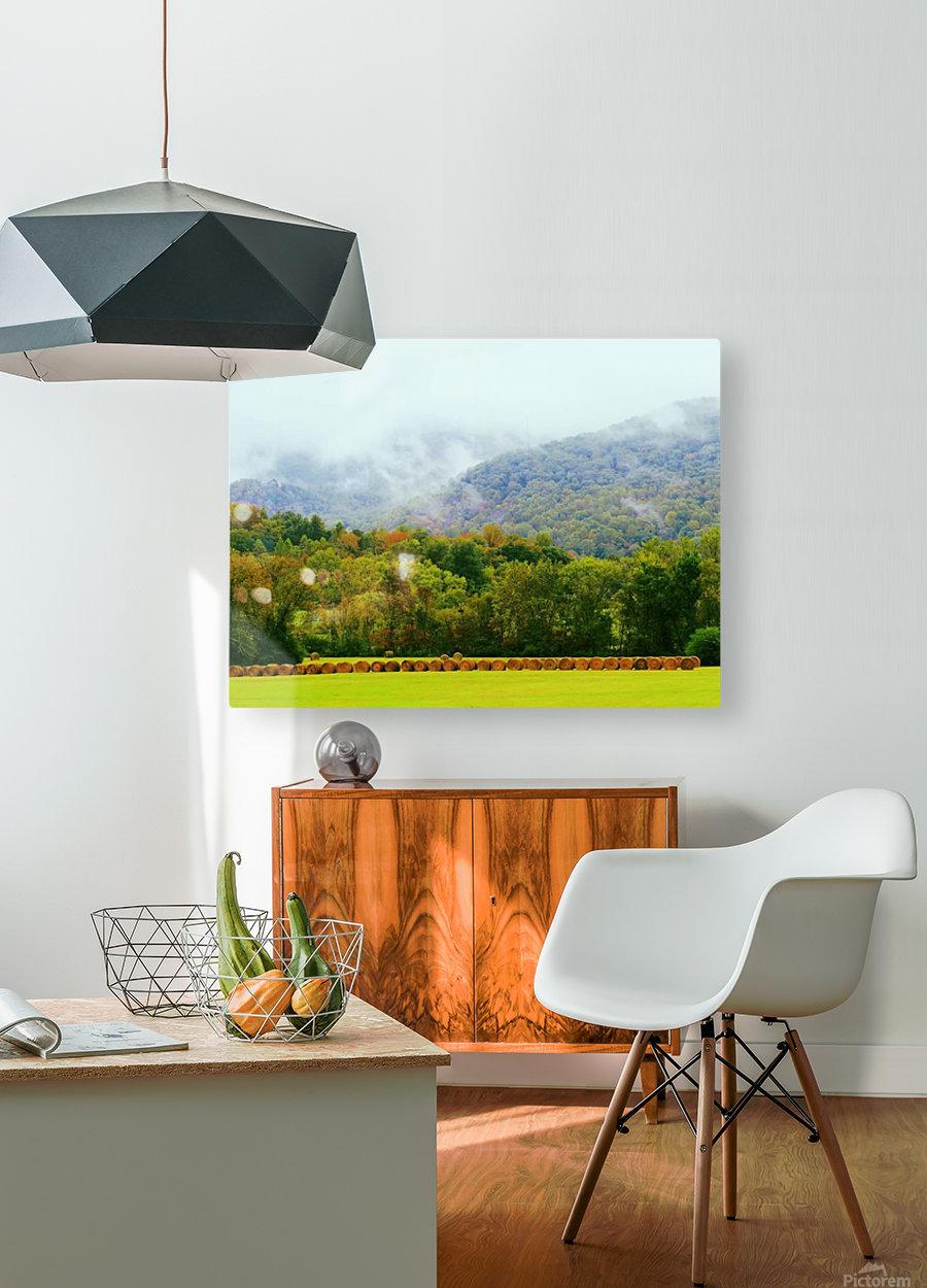 CC9A6BD8 E8A7 4807 8C93 F2153C070E80  HD Metal print with Floating Frame on Back