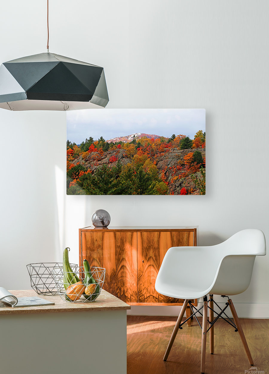 Silver Peak  HD Metal print with Floating Frame on Back