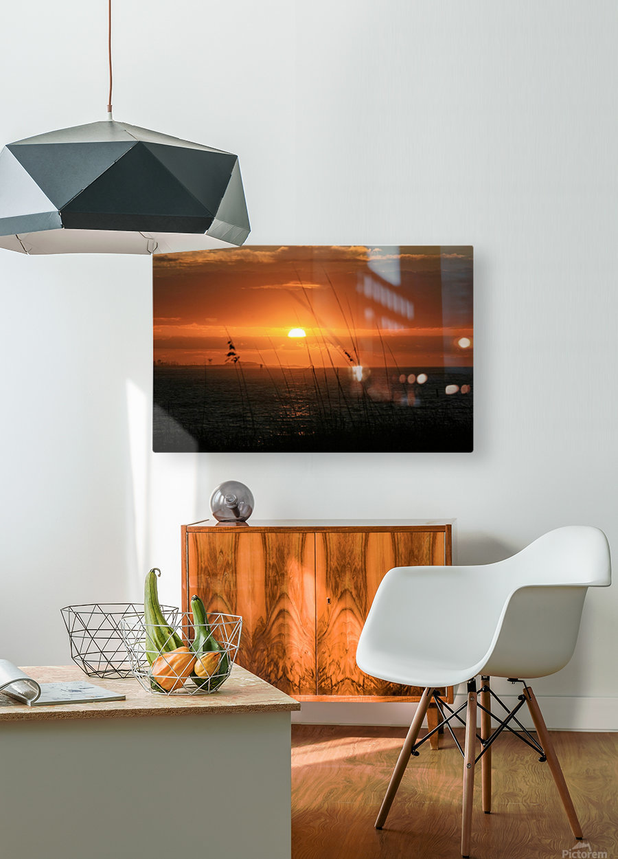 Sea Grass Sunset  HD Metal print with Floating Frame on Back
